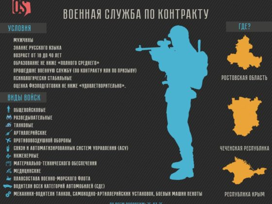 инфографика. контрактники