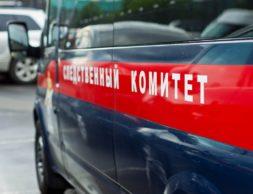 sledkom-cheltv-ru_2