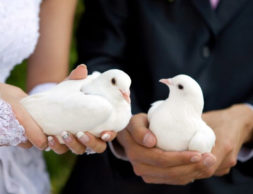 rossiyane-smogut-vybirat-datu-svadby