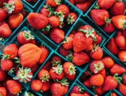 Berry_Strawberry_Many_495781_1920x1200